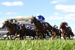"""Greg """"THE G"""" Hall on preparing for a Melbourne Cup"""