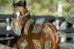 How much horse do you get for $2,800,000?