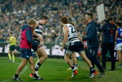 Melbourne great urges AFL to reduce interchange numbers