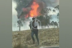 NRL star Latrell Mitchell helps farmers fighting the bushfires